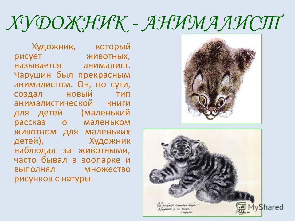 Художник, который рисует животных, называется анималист. Чарушин был прекрасным анималистом. Он, по сути, создал новый тип анималистической книги для детей (маленький рассказ о маленьком животном для маленьких детей), Художник наблюдал за животными,