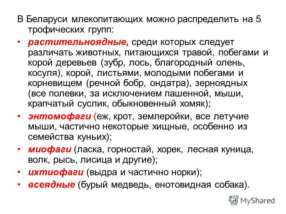 В Беларуси млекопитающих можно распределить на 5 трофических групп: растительноядные, среди которых следует различать животных, питающихся травой, побегами и корой деревьев (зубр, лось, благородный олень, косуля), корой, листьями, молодыми побегами и