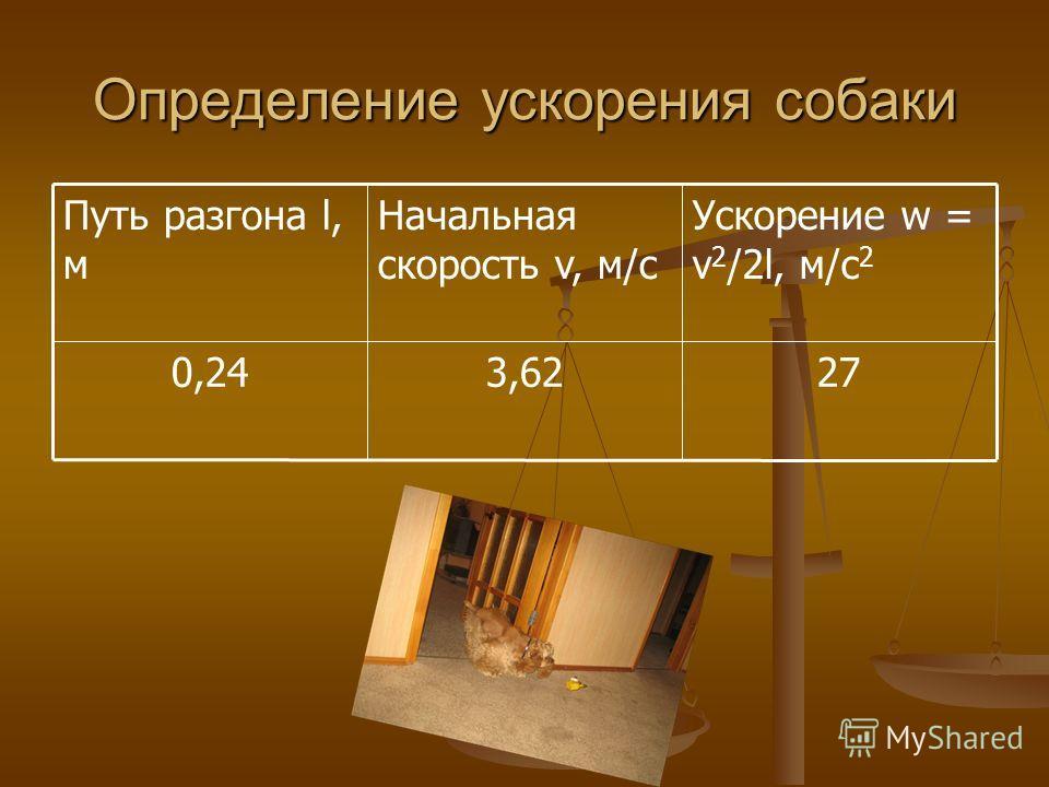 Определение ускорения собаки 273,620,24 Ускорение w = v 2 /2l, м/с 2 Начальная скорость v, м/с Путь разгона l, м