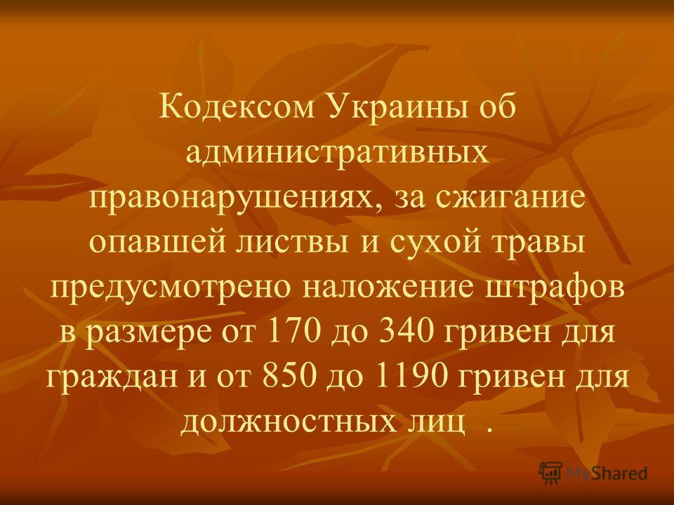Кодексом Украины об административных правонарушениях, за сжигание опавшей листвы и сухой травы предусмотрено наложение штрафов в размере от 170 до 340 гривен для граждан и от 850 до 1190 гривен для должностных лиц.