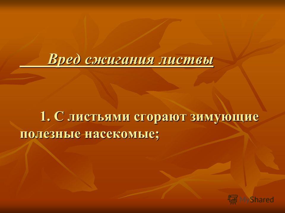 Вред сжигания листвы 1. С листьями сгорают зимующие полезные насекомые; Вред сжигания листвы 1. С листьями сгорают зимующие полезные насекомые;