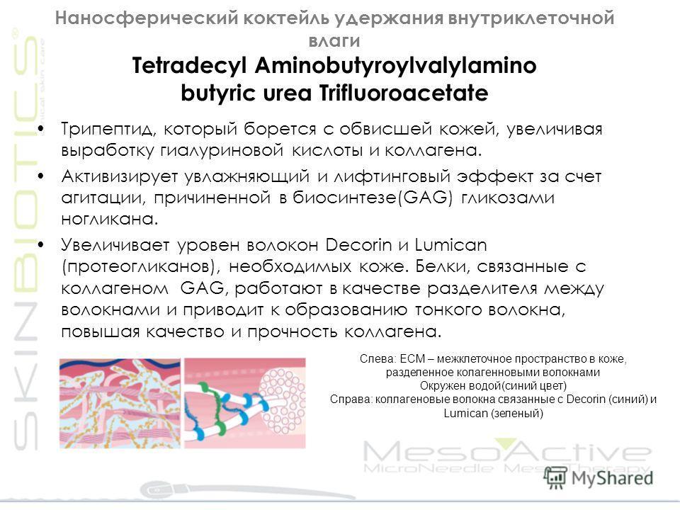 Наносферический коктейль удержания внутриклеточной влаги Tetradecyl Aminobutyroylvalylamino butyric urea Trifluoroacetate Трипептид, который борется с обвисшей кожей, увеличивая выработку гиалуриновой кислоты и коллагена. Активизирует увлажняющий и л