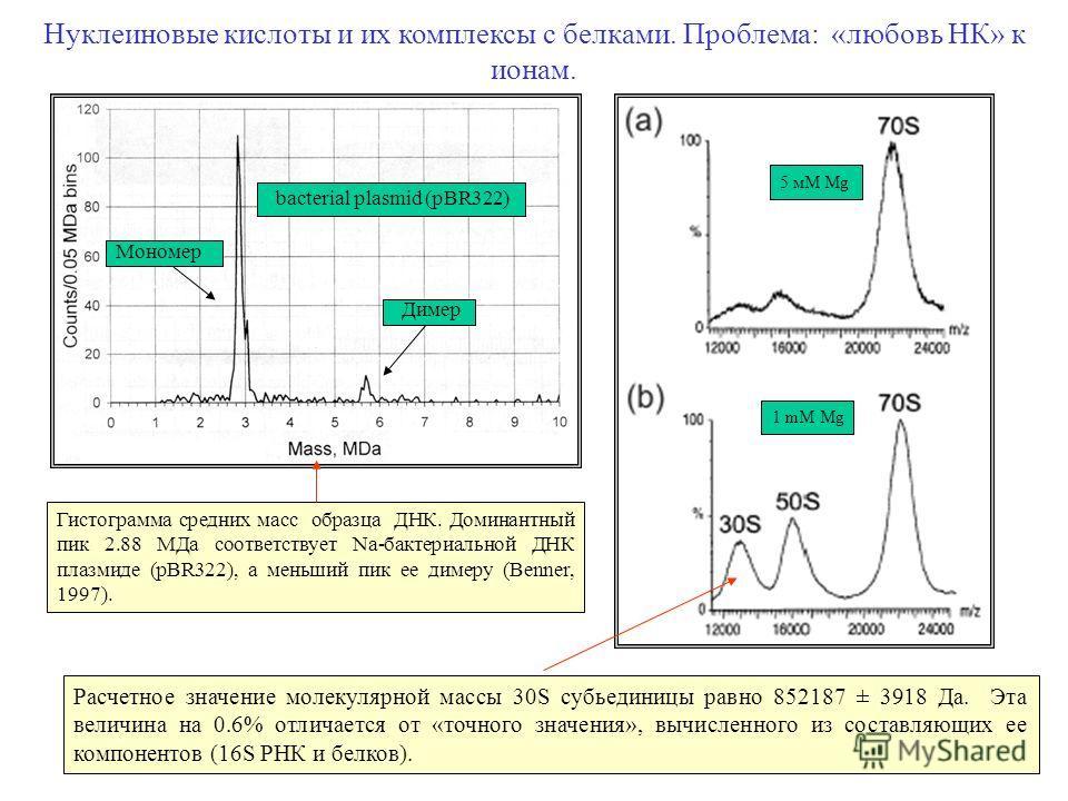 10 Нуклеиновые кислоты и их комплексы с белками. Проблема: «любовь НК» к ионам. Гистограмма средних масс образца ДНК. Доминантный пик 2.88 MДa соответствует Na-бактериальной ДНК плазмиде (pBR322), а меньший пик ее димеру (Benner, 1997). Расчетное зна