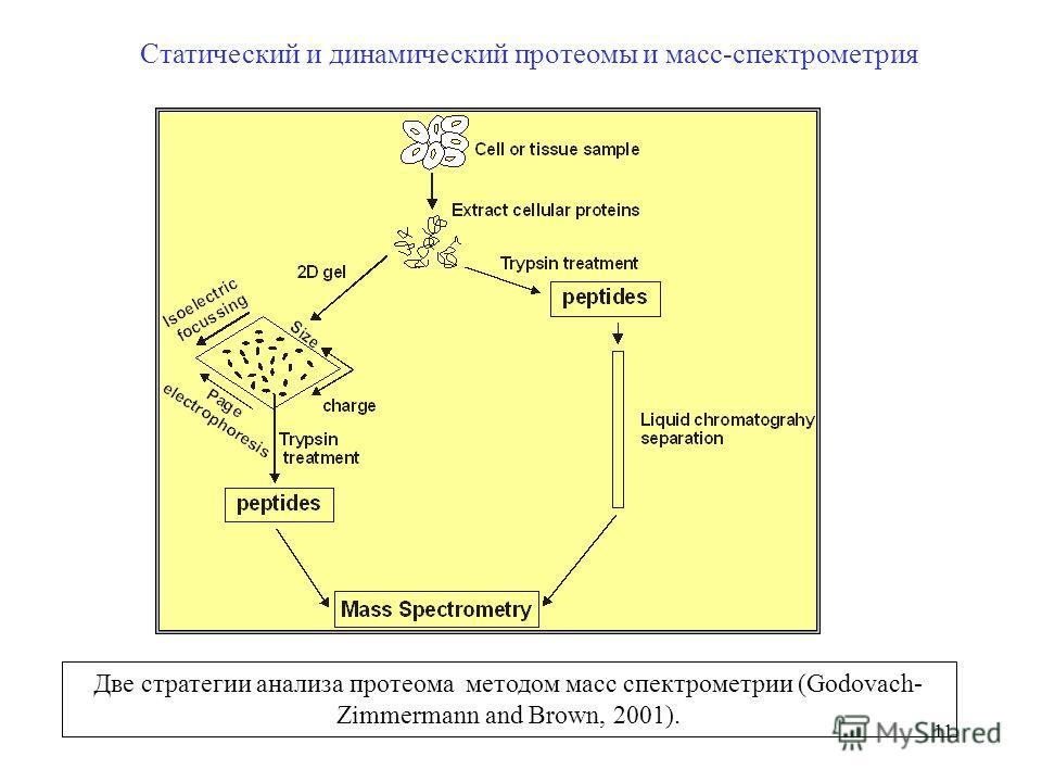 11 Статический и динамический протеомы и масс-спектрометрия Две стратегии анализа протеома методом масс спектрометрии (Godovach- Zimmermann and Brown, 2001).