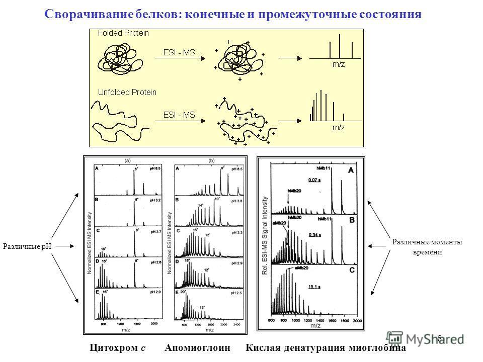 8 Сворачивание белков: конечные и промежуточные состояния Цитохром c Апомиоглоин Кислая денатурация миоглобина Различные pH Различные моменты времени