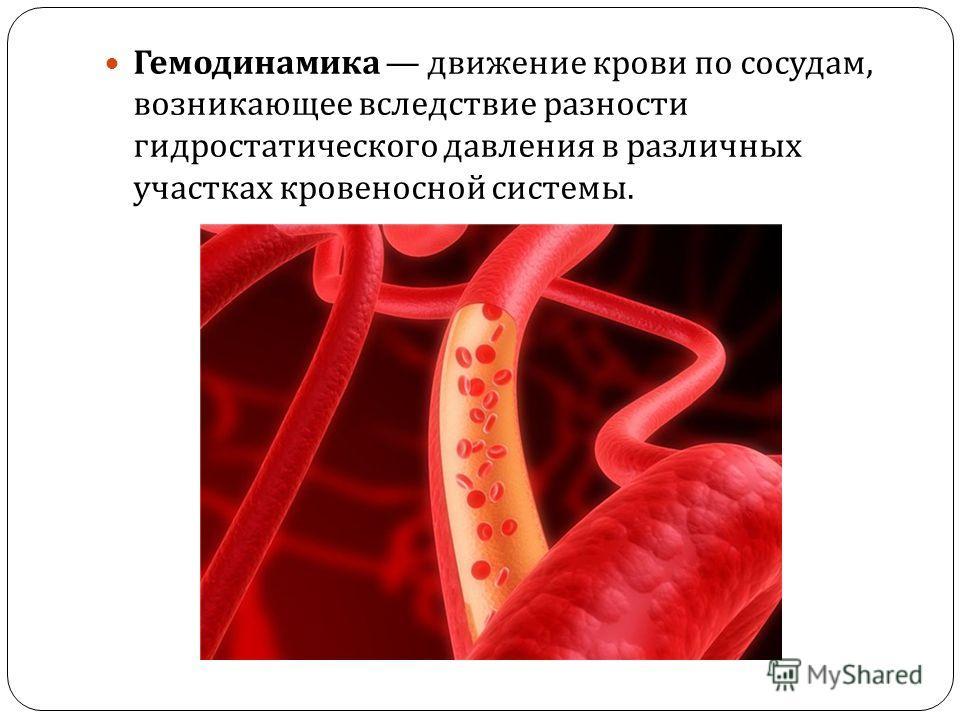 Гемодинамика движение крови по сосудам, возникающее вследствие разности гидростатического давления в различных участках кровеносной системы.