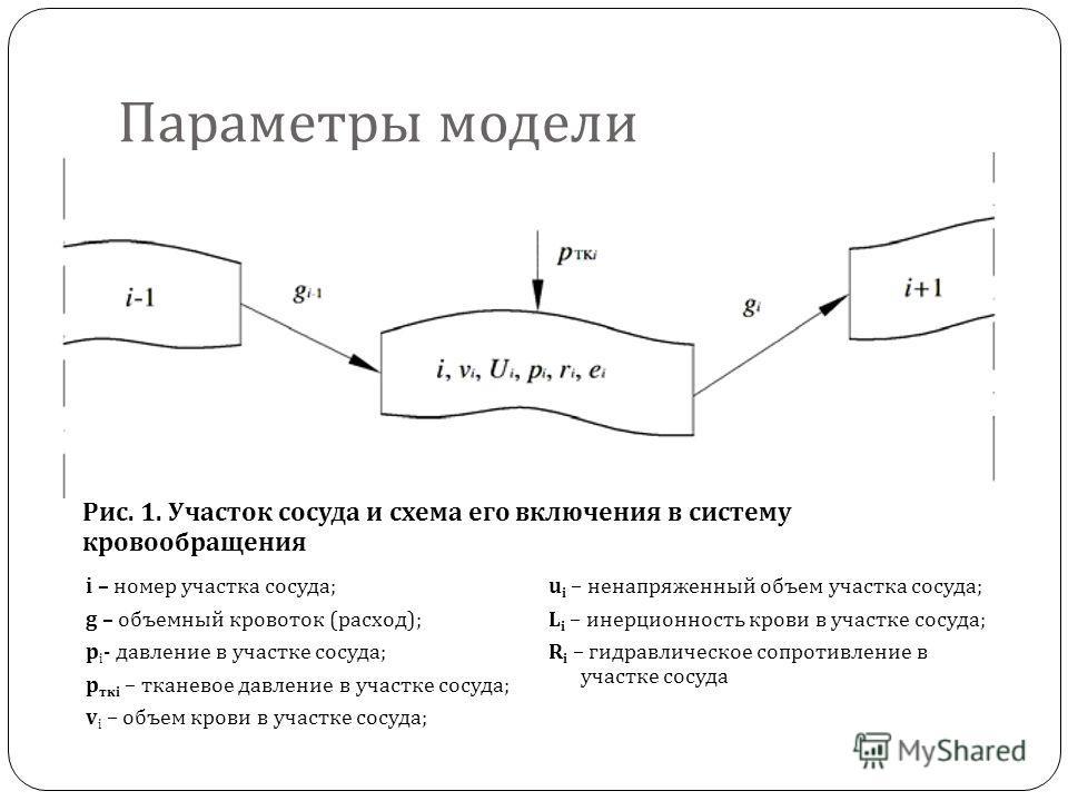 Параметры модели i – номер участка сосуда; g – объемный кровоток (расход); p i - давление в участке сосуда; p ткi – тканевое давление в участке сосуда; v i – объем крови в участке сосуда; u i – ненапряженный объем участка сосуда; L i – инерционность