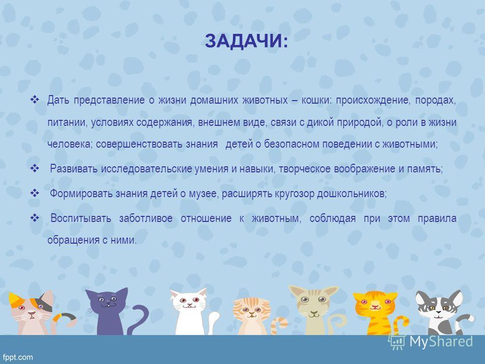 ЗАДАЧИ: Дать представление о жизни домашних животных – кошки: происхождение, породах, питании, условиях содержания, внешнем виде, связи с дикой природой, о роли в жизни человека; совершенствовать знания детей о безопасном поведении с животными; Разви