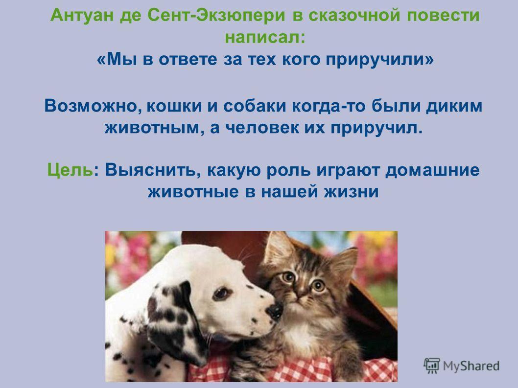 Антуан де Сент-Экзюпери в сказочной повести написал: «Мы в ответе за тех кого приручили» Возможно, кошки и собаки когда-то были диким животным, а человек их приручил. Цель: Выяснить, какую роль играют домашние животные в нашей жизни