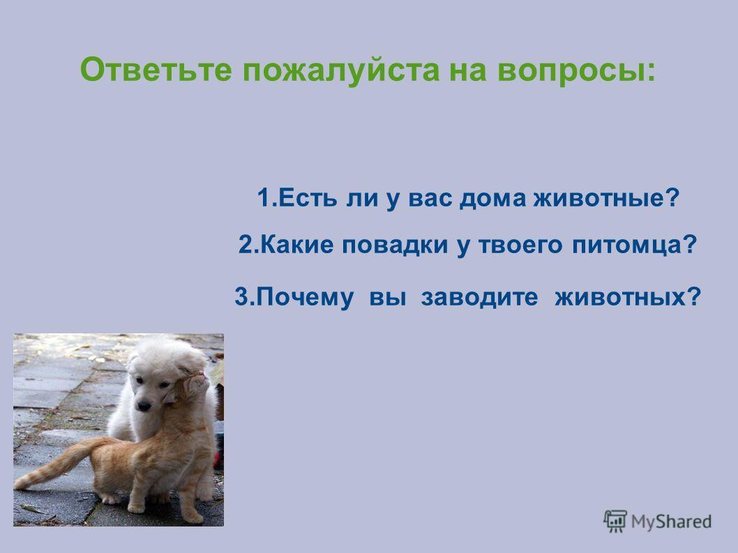 Ответьте пожалуйста на вопросы: 1. Есть ли у вас дома животные? 2. Какие повадки у твоего питомца? 3. Почему вы заводите животных?