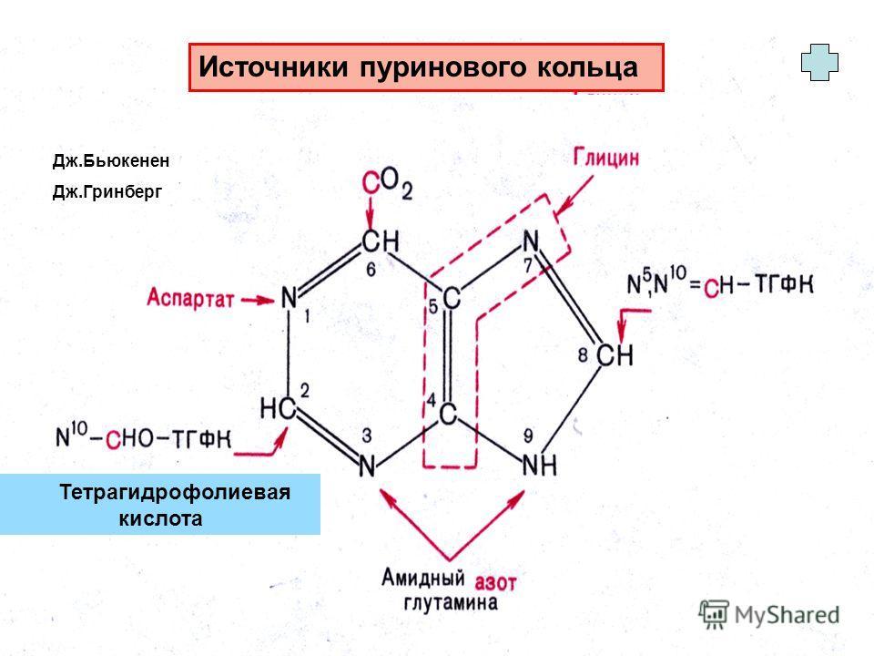Источники пуринового кольца Тетрагидрофолиевая кислота Дж.Бьюкенен Дж.Гринберг