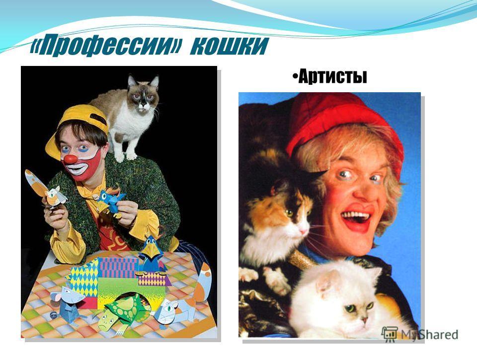 «Профессии» кошки Артисты
