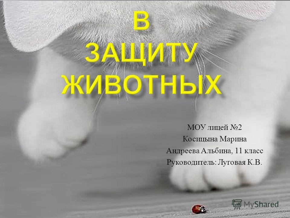 МОУ лицей 2 Косицына Марина Андреева Альбина, 11 класс Руководитель : Луговая К. В.