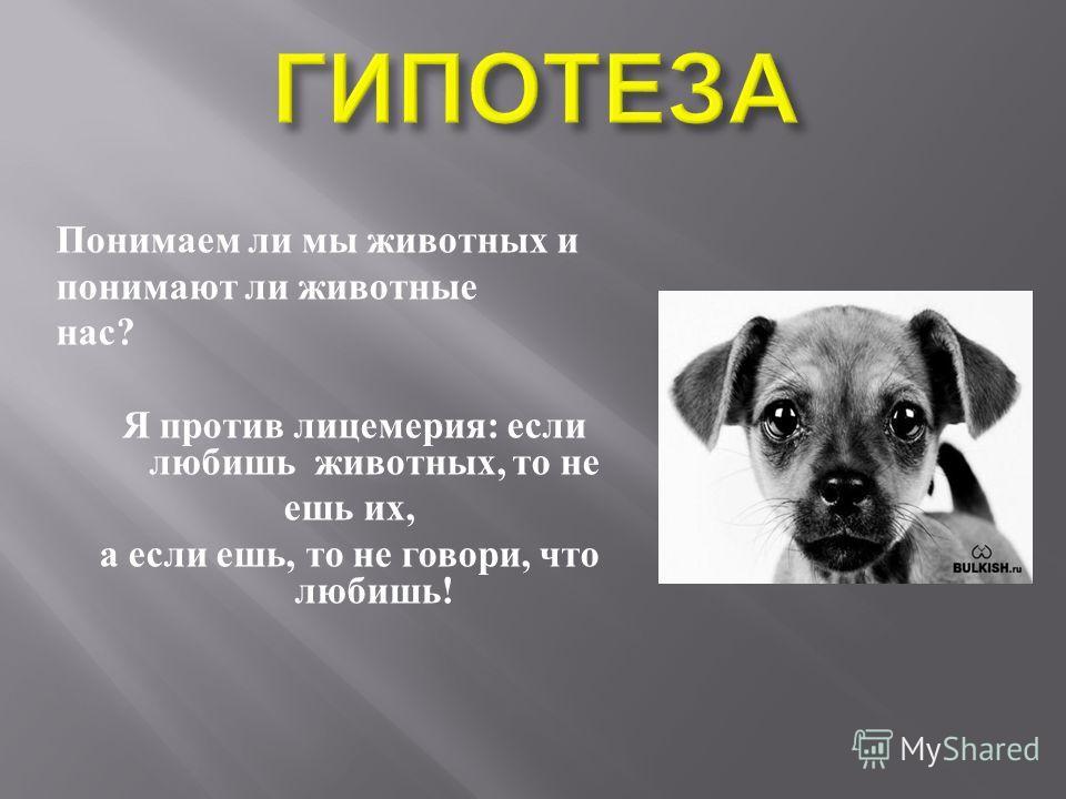 Понимаем ли мы животных и понимают ли животные нас ? Я против лицемерия : если любишь животных, то не ешь их, а если ешь, то не говори, что любишь !