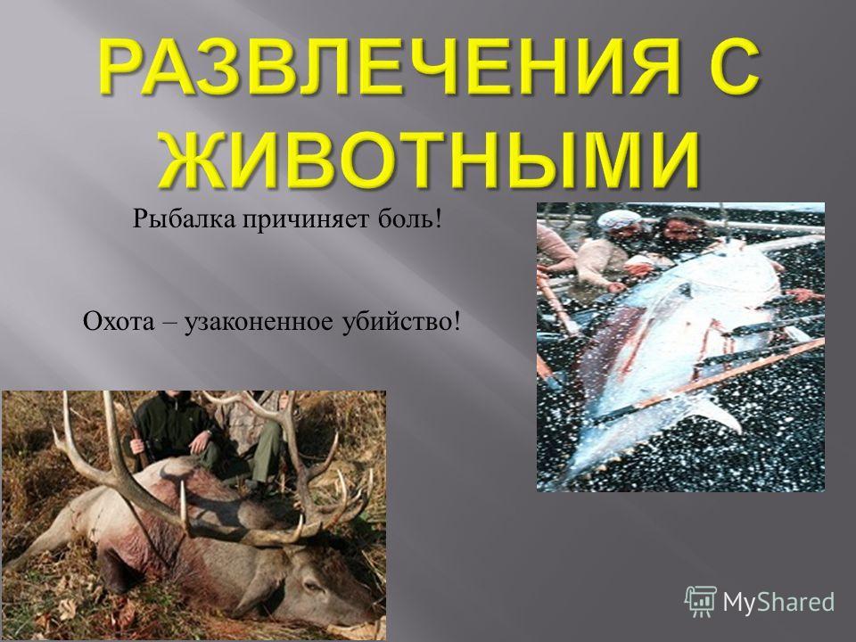 Рыбалка причиняет боль ! Охота – узаконенное убийство !