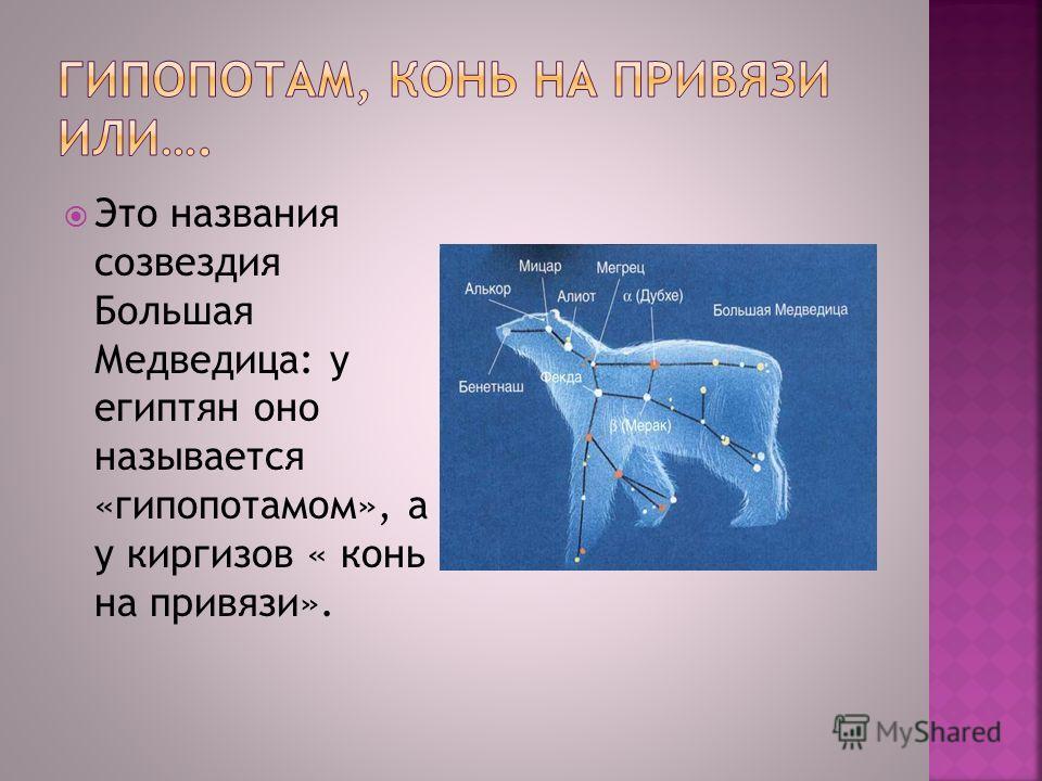 Это названия созвездия Большая Медведица: у египтян оно называется «гипопотамом», а у киргизов « конь на привязи».