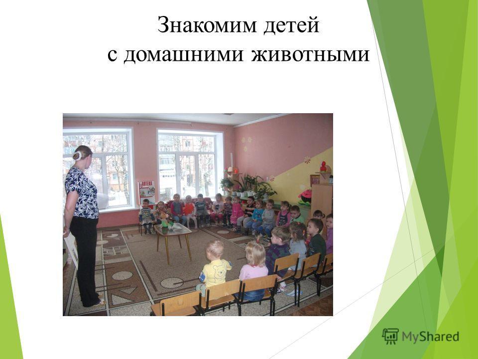 консультация знакомим детей с дикими животными