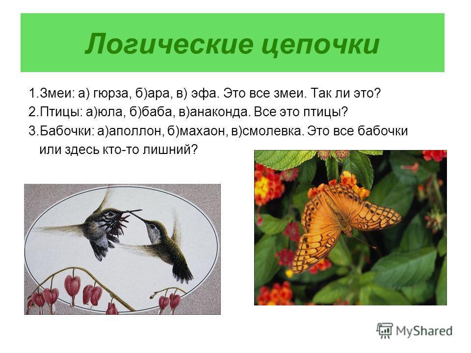 Логические цепочки 1.Змеи: а) гюрза, б)ара, в) эфа. Это все змеи. Так ли это? 2.Птицы: а)юла, б)баба, в)анаконда. Все это птицы? 3.Бабочки: а)аполлон, б)махаон, в)смолевка. Это все бабочки или здесь кто-то лишний?