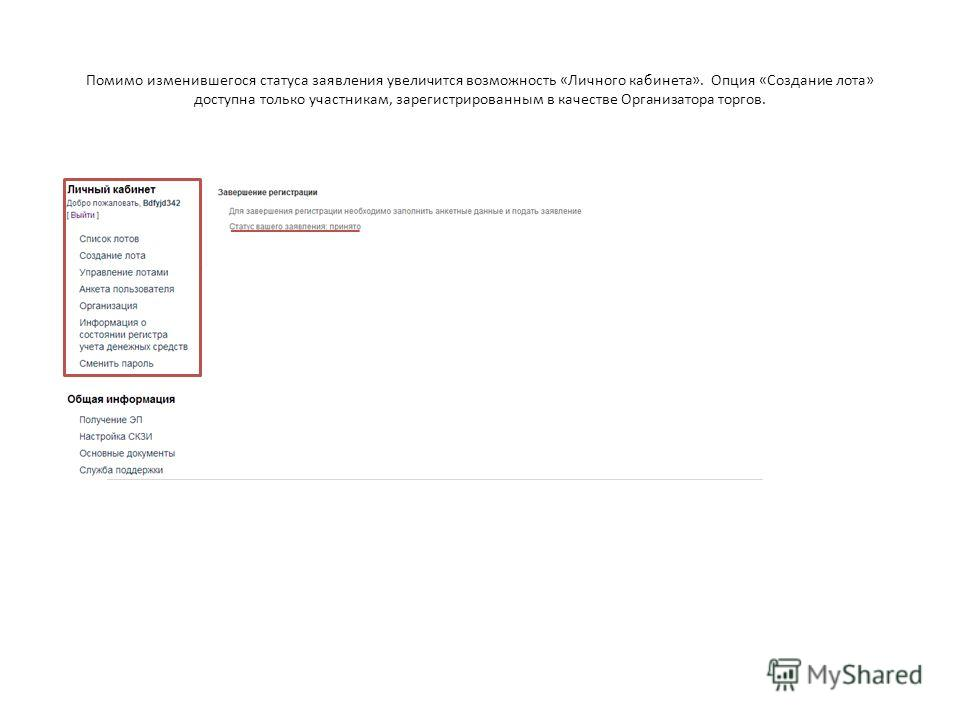 Помимо изменившегося статуса заявления увеличится возможность «Личного кабинета». Опция «Создание лота» доступна только участникам, зарегистрированным в качестве Организатора торгов.