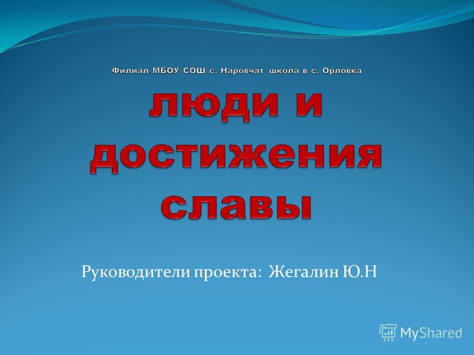 Руководители проекта: Жегалин Ю.Н