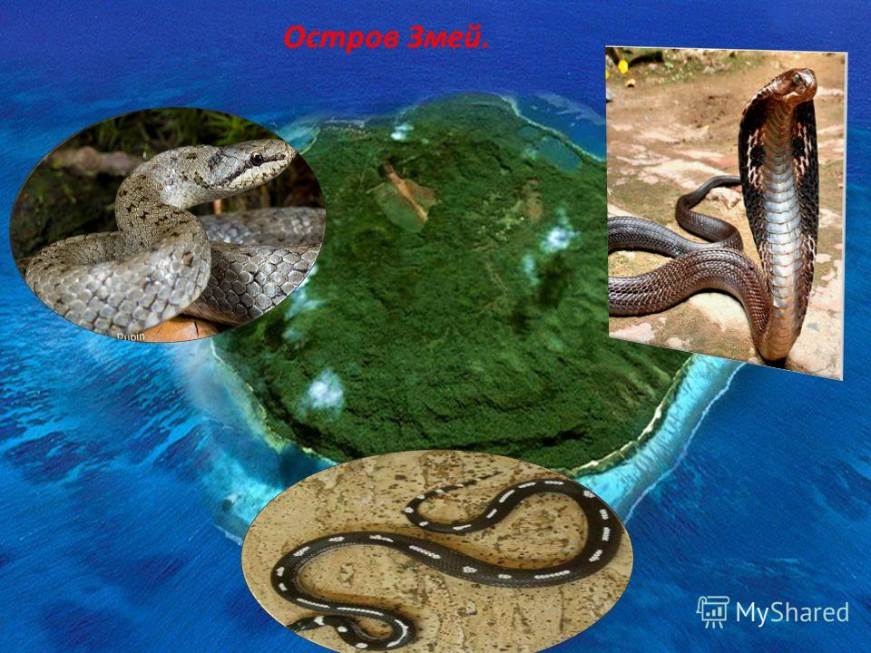 Остров Змей.