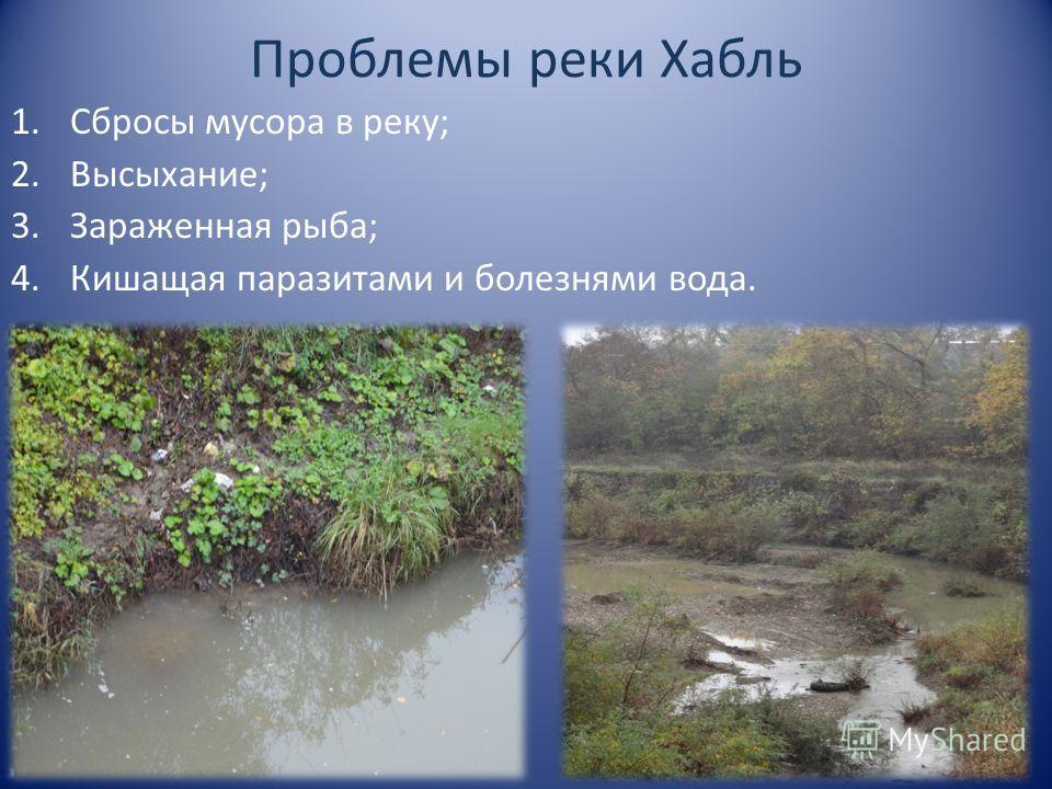 Проблемы реки Хабль 1. Сбросы мусора в реку; 2.Высыхание; 3. Зараженная рыба; 4. Кишащая паразитами и болезнями вода.