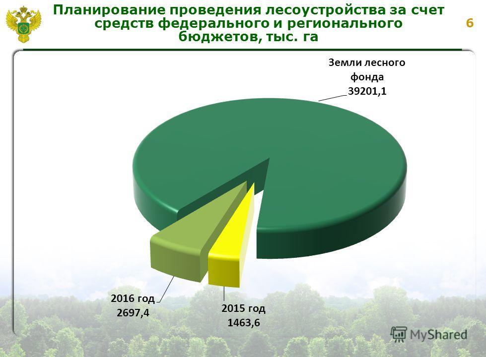 6 Планирование проведения лесоустройства за счет средств федерального и регионального бюджетов, тыс. га