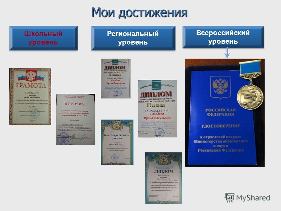 Школьный уровень Региональный уровень Всероссийский уровень Всероссийский уровень Мои достижения
