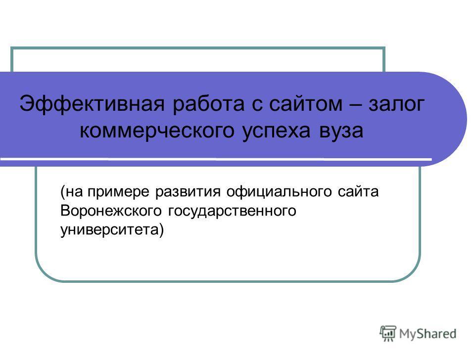 Эффективная работа с сайтом – залог коммерческого успеха вуза (на примере развития официального сайта Воронежского государственного университета)