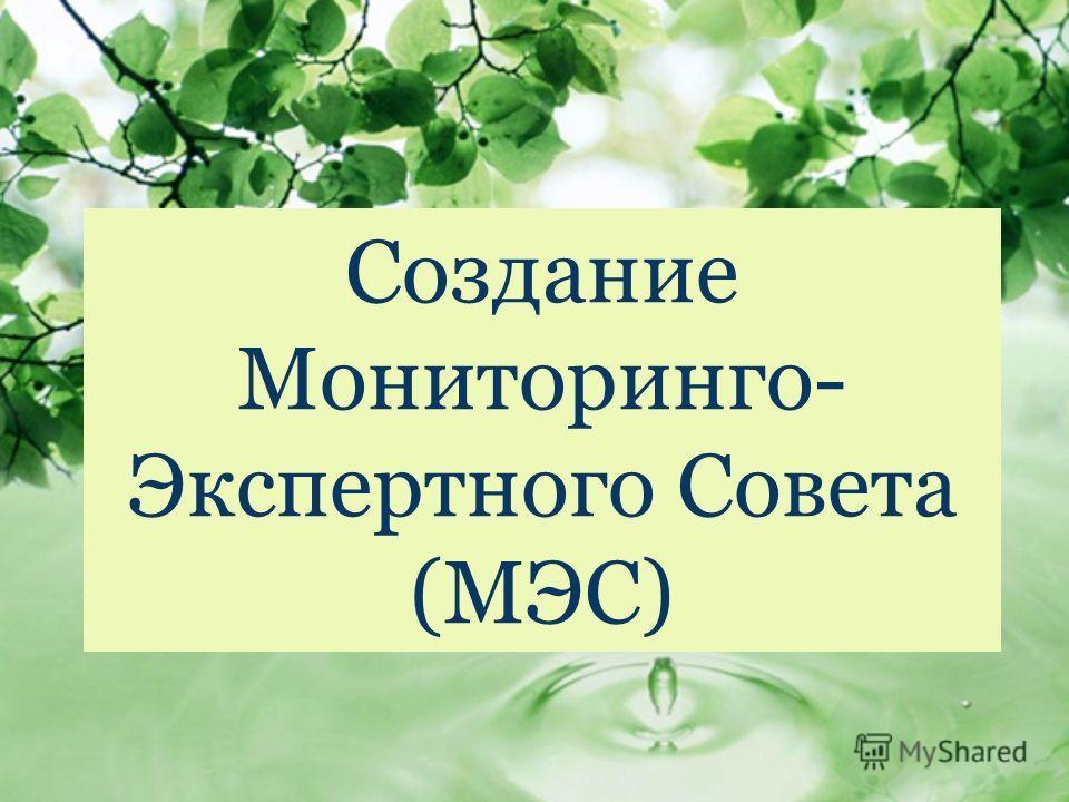 Создание Мониторинго- Экспертного Совета (МЭС)