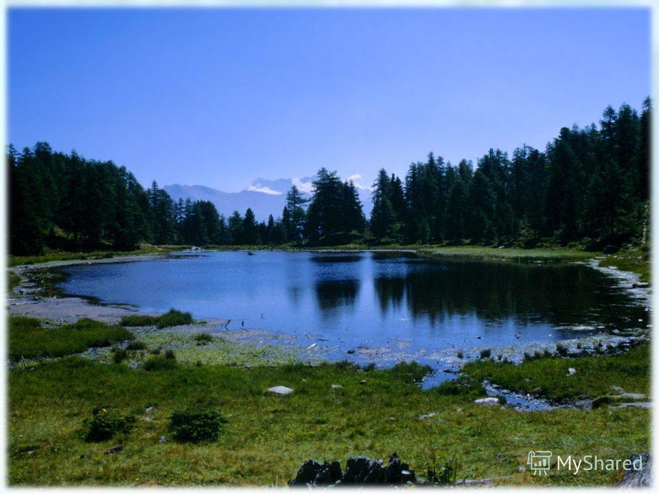 Серед поля лежить дзеркало Скло голубе, а рама зелена.
