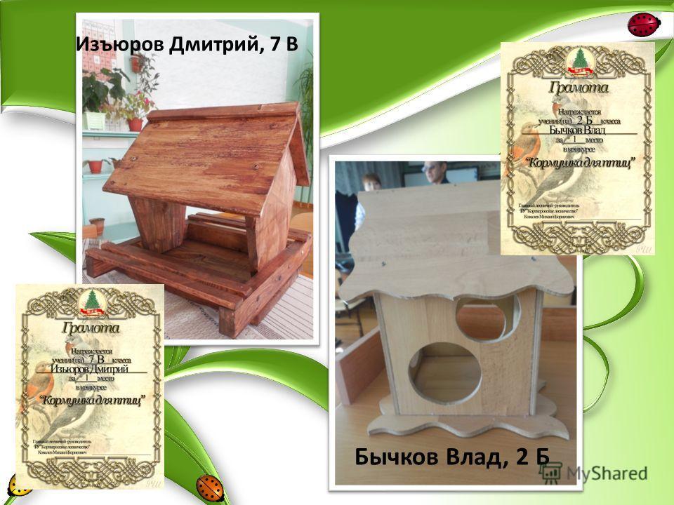 Бычков Влад, 2 Б Изъюров Дмитрий, 7 В