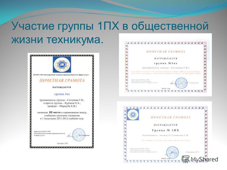 Участие группы 1ПХ в общественной жизни техникума.