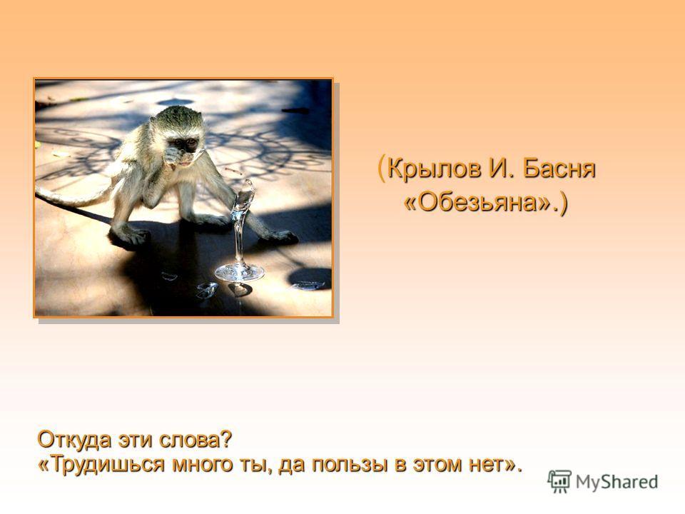 Крылов И. Басня «Обезьяна».) ( Крылов И. Басня «Обезьяна».) Откуда эти слова? «Трудишься много ты, да пользы в этом нет».
