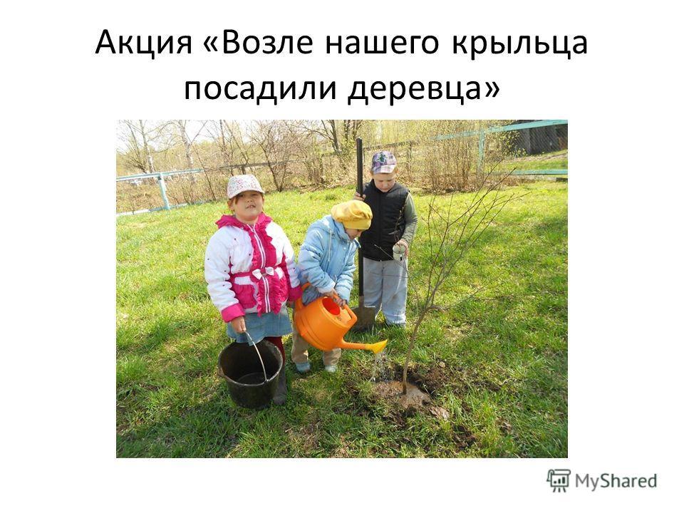 Акция «Возле нашего крыльца посадили деревца»