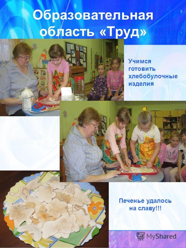 Образовательная область «Труд» Учимся готовить хлебобулочные изделия Печенье удалось на славу!!!