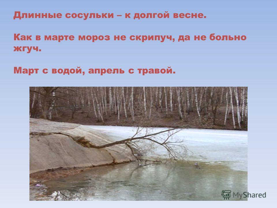 Длинные сосульки – к долгой весне. Как в марте мороз не скрипуч, да не больно жгуч. Март с водой, апрель с травой.