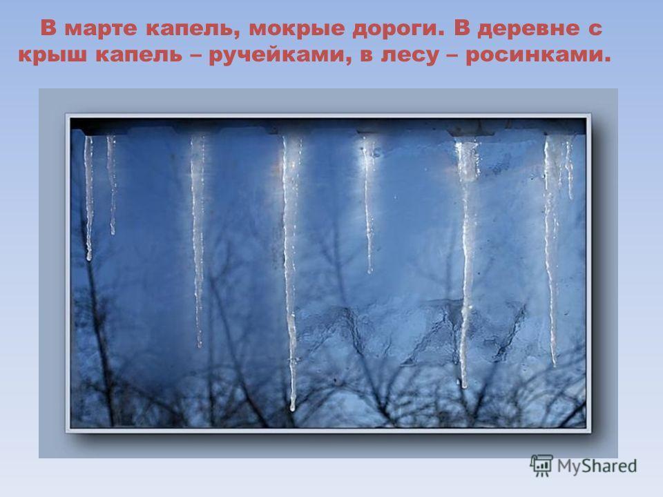 В марте капель, мокрые дороги. В деревне с крыш капель – ручейками, в лесу – росинками.