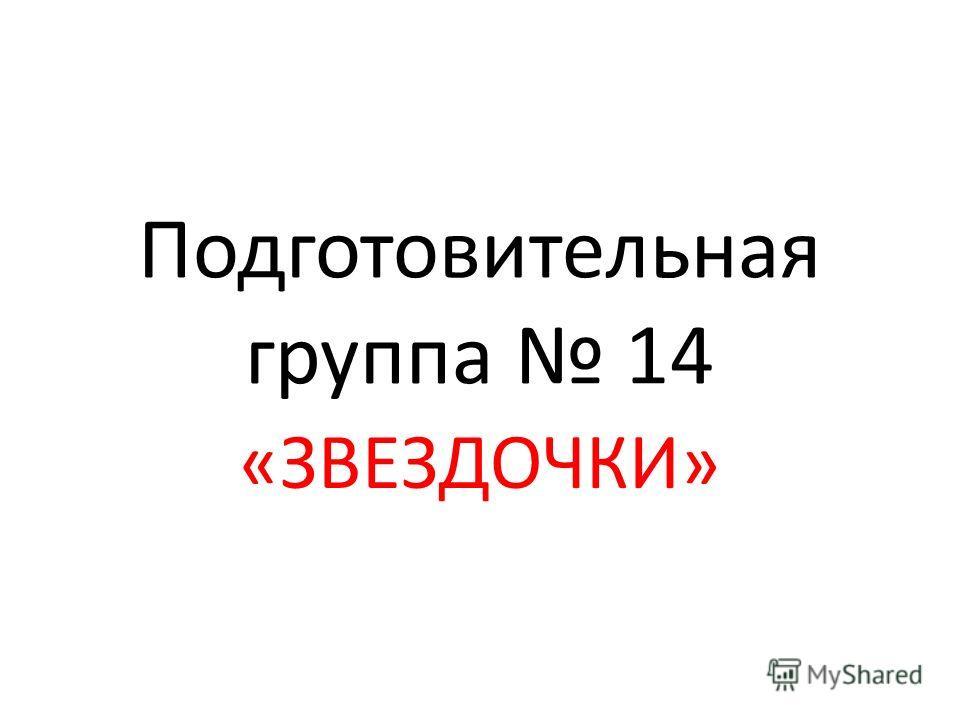 Подготовительная группа 14 «ЗВЕЗДОЧКИ»