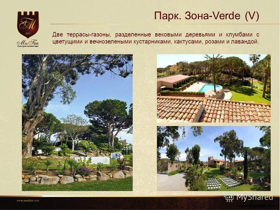 Парк. Зона-Verde (V) www.masfalet.com Две террасы-газоны, разделенные вековыми деревьями и клумбами с цветущими и вечнозелеными кустарниками, кактусами, розами и лавандой.
