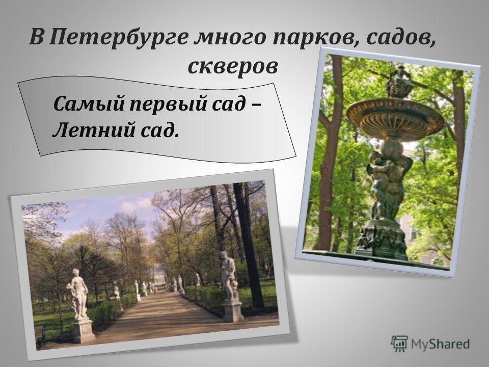 В Петербурге много парков, садов, скверов Самый первый сад – Летний сад.