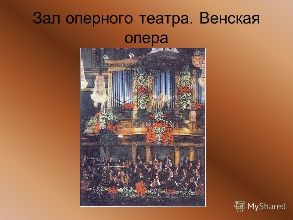 Зал оперного театра. Венская опера