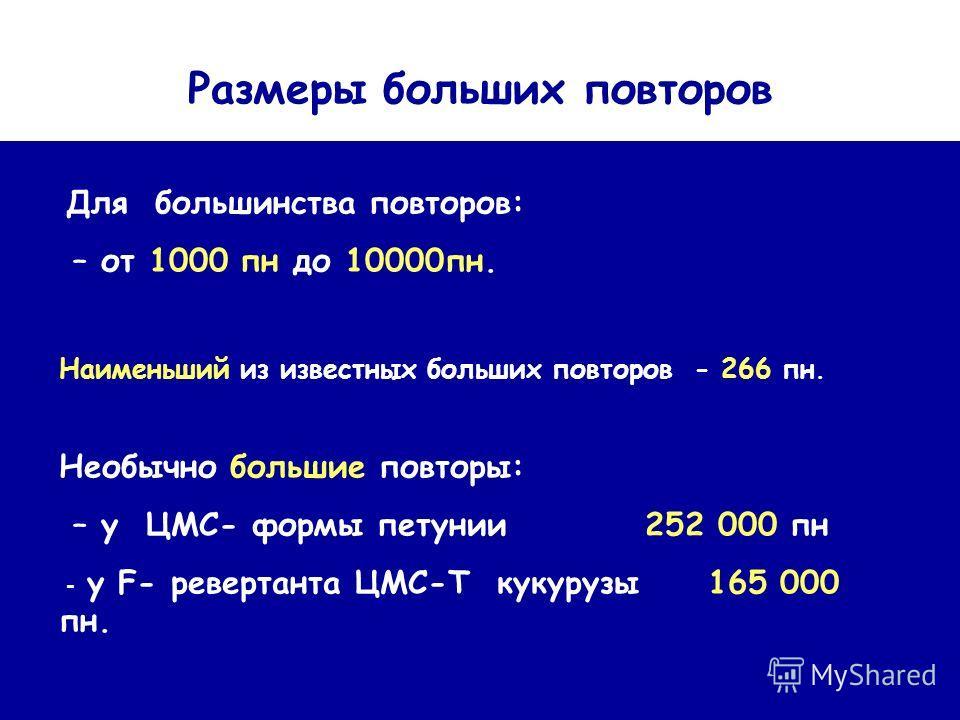 Размеры больших повторов Для большинства повторов: – от 1000 пн до 10000 пн. Наименьший из известных больших повторов - 266 пн. Необычно большие повторы: – у ЦМС- формы петунии 252 000 пн - у F- ревертанта ЦМС-Т кукурузы 165 000 пн.