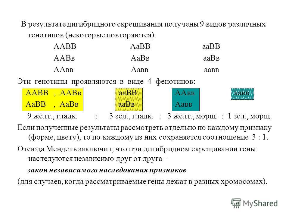 В результате дигибридного скрещивания получены 9 видов различных генотипов (некоторые повторяются): ААВВ АаВВ ааВВ ААВв Аа Вв аа Вв ААвв Аавв аавв Эти генотипы проявляются в виде 4 фенотипов: ААВВ, ААВв ааВВ ААвв аавв АаВВ, Аа Вв аа Вв Аавв 9 жёлт.,