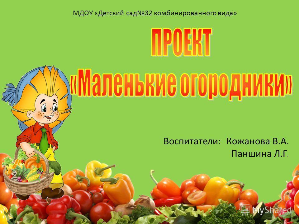Воспитатели: Кожанова В.А. Паншина Л.Г. МДОУ «Детский сад 32 комбинированного вида»