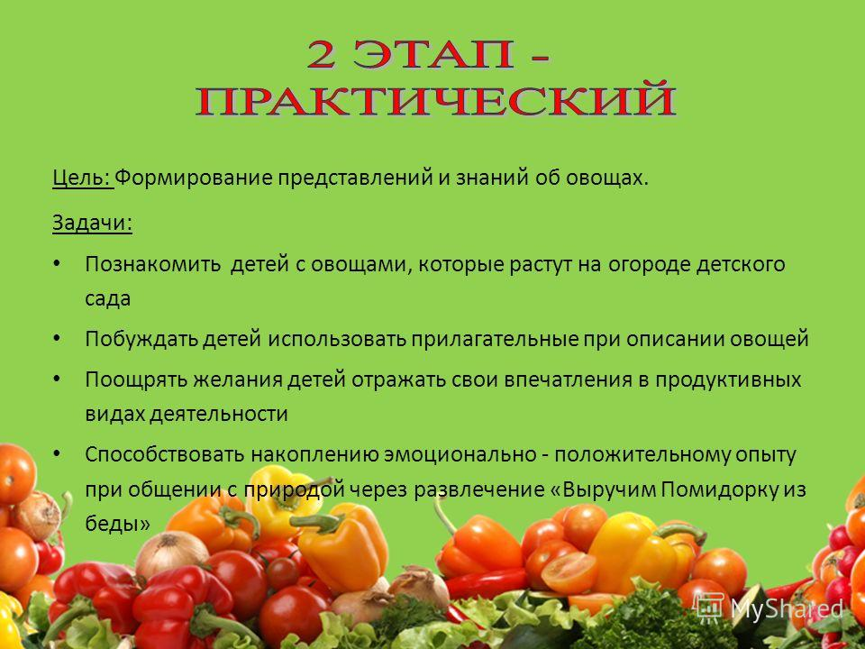 Цель: Формирование представлений и знаний об овощах. Задачи: Познакомить детей с овощами, которые растут на огороде детского сада Побуждать детей использовать прилагательные при описании овощей Поощрять желания детей отражать свои впечатления в проду
