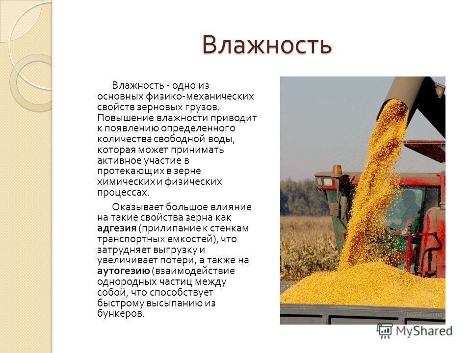 Влажность Влажность - одно из основных физико - механических свойств зерновых грузов. Повышение влажности приводит к появлению определенного количества свободной воды, которая может принимать активное участие в протекающих в зерне химических и физиче