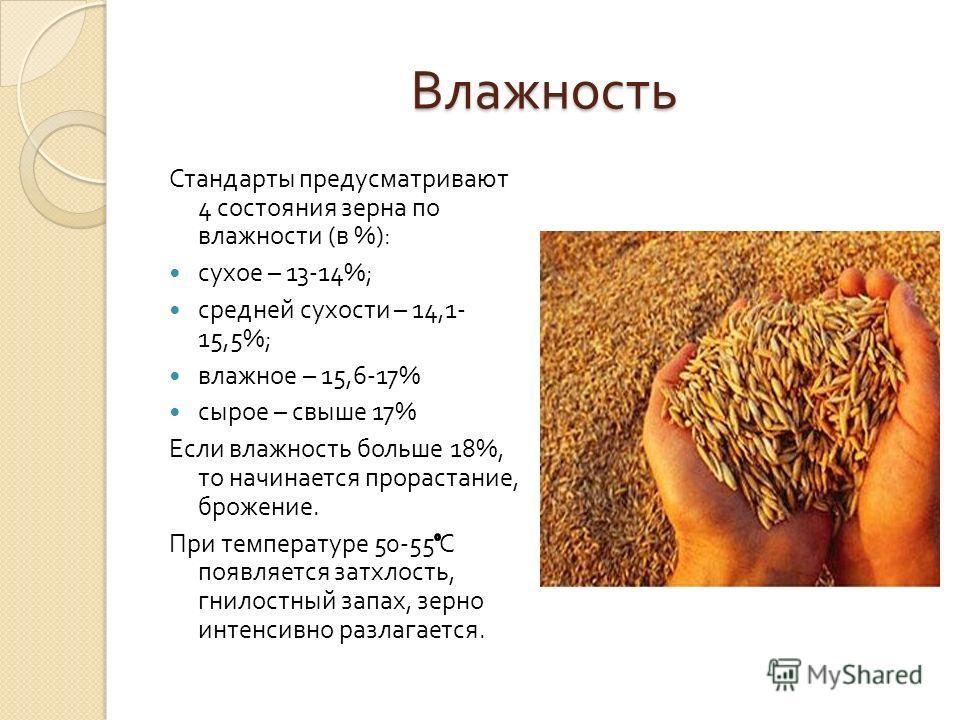 Влажность Стандарты предусматривают 4 состояния зерна по влажности ( в %): сухое – 13-14%; средней сухости – 14,1- 15,5%; влажное – 15,6-17% сырое – свыше 17% Если влажность больше 18%, то начинается прорастание, брожение. При температуре 50-55 С поя