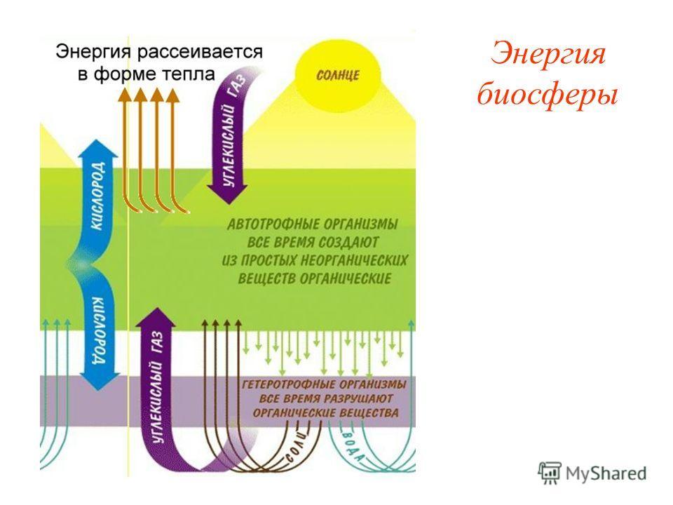 Энергия биосферы