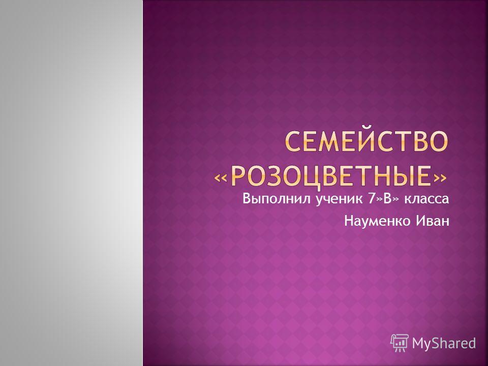 Выполнил ученик 7»В» класса Науменко Иван